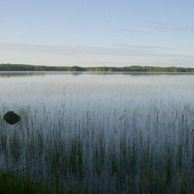 eltravel_Ferienhaus_in_Finnland_Kihnioe_Moekki_075