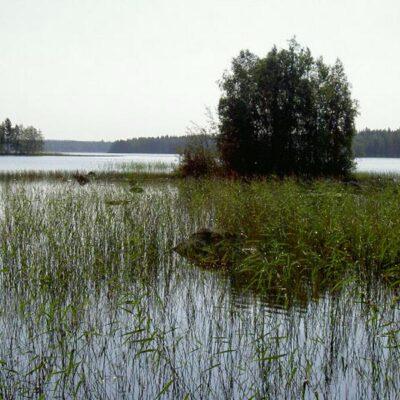 eltravel_Ferienhaus_in_Finnland_Kihnioe_Moekki_089